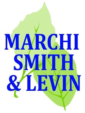 Marchi Smith & Levin Logo