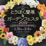 とうほく蘭展&ガーデンフェスタ2019 1/31(木)~2/4(月) 夢メッセみやぎで開催 チケット
