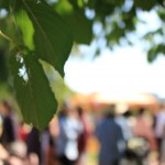 あすと長町 KHBフリーマーケット 2020.10.31(土)~11.1(日) 同時開催・秋のグルメマルシェ