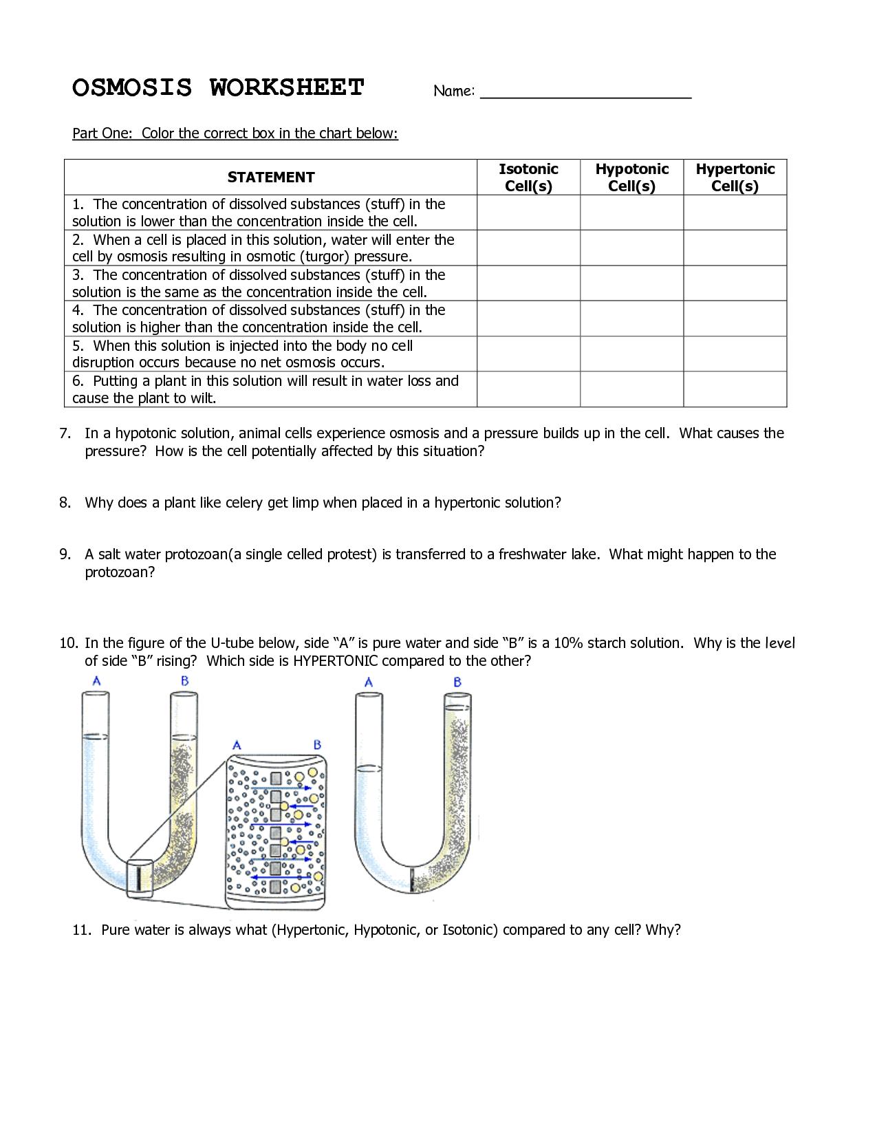 Osmosis Diffusion Worksheet Free Worksheets Library