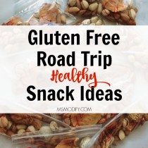 Gluten Free Road Trip Snack Ideas