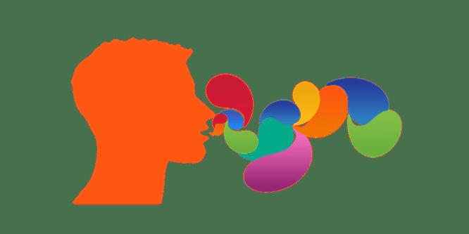 safe words communication safe signal bdsm kinky consent