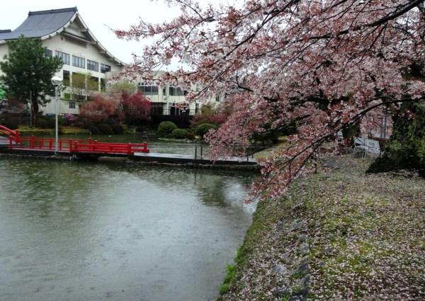 4-13 雨の松川プール 312
