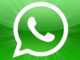 how to mute a whatsapp group notification on android iphone