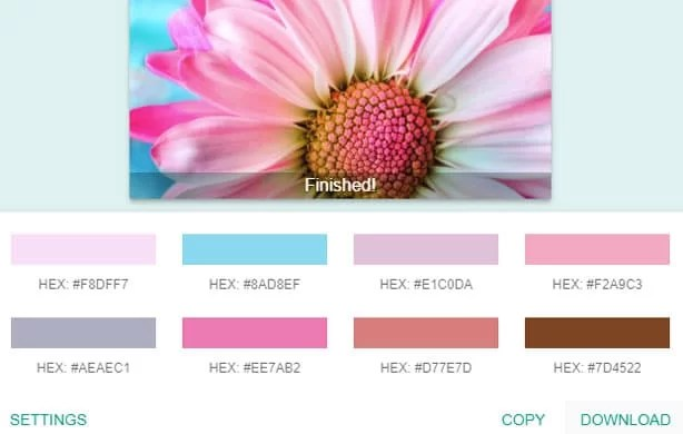 extract color palette using chrome extension