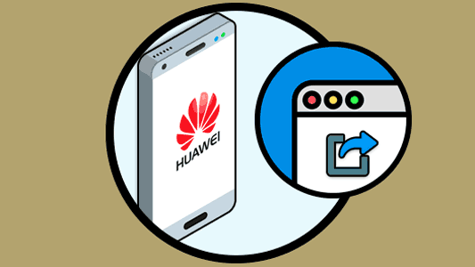 direct access to a webpage in Huawei Mate 10