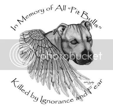 In Memory of All Pit Bulls