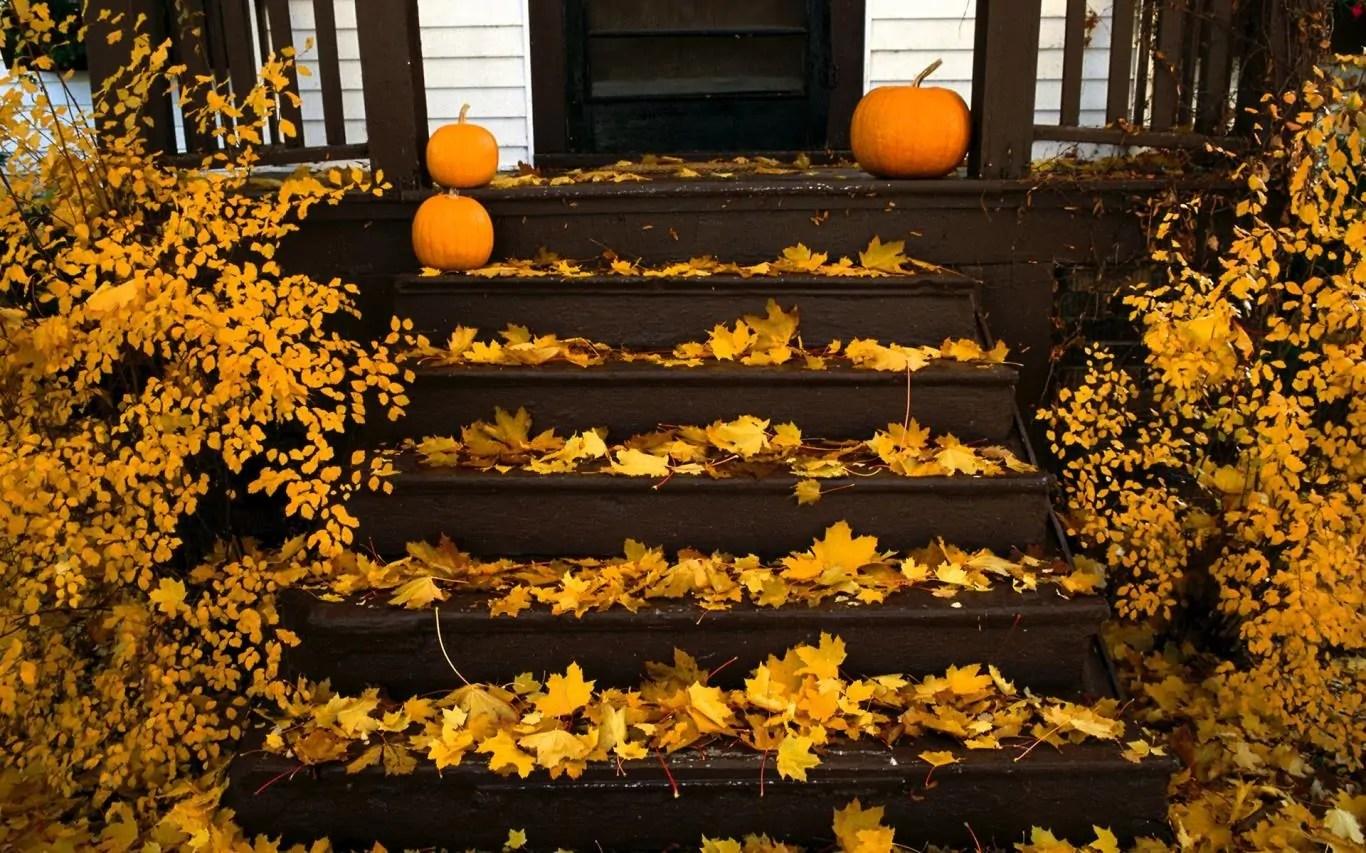 Free Fall Themed Desktop Wallpaper Microsoft Release Halloween Themed Windows 10 Wallpaper To