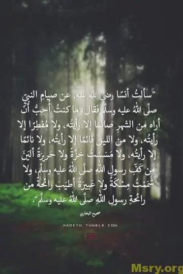احاديث نبوية شريفة صحيحة متفق عليها من صحيح البخارى ومسلم