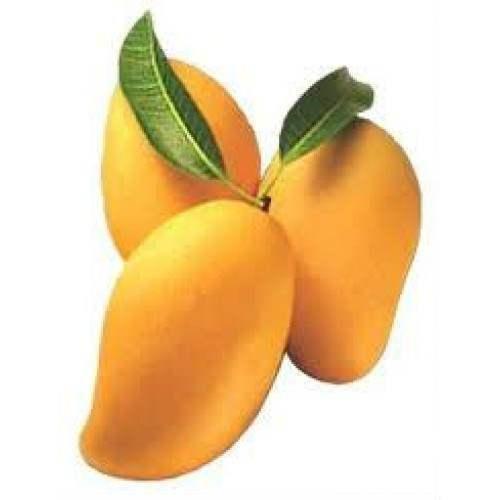 حل لغز كلمة السر هي فاكهة مكونة من 5 حروف موقع مصري