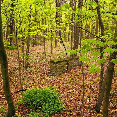 800px-stonewall_in_delaware_township
