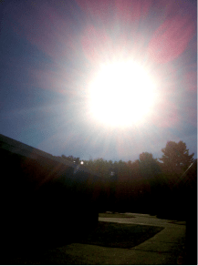 MD-capture of light