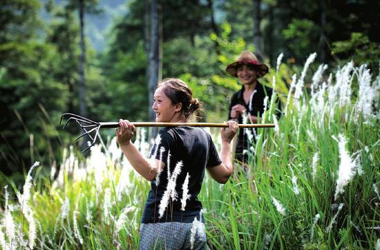 一個女人的王國:深山守護山林18年
