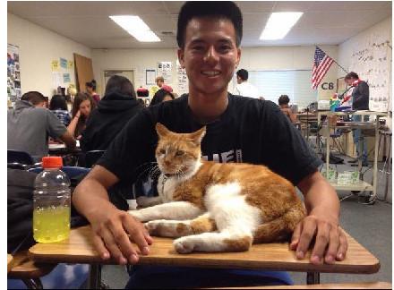 加州高中特殊學生喵大爺:睡覺、旁聽、逮老鼠
