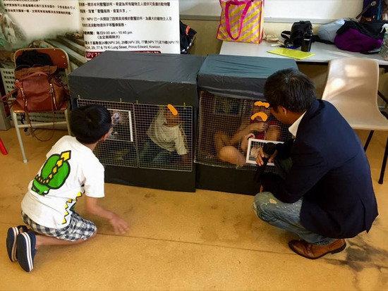 小朋友入鐵籠體驗:今生今世不買動物