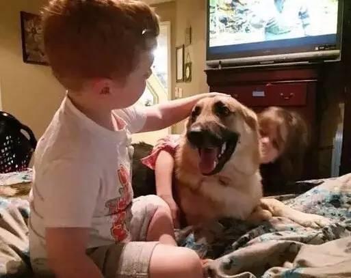 收養了一隻德牧,沒想到這隻狗救了女兒一命