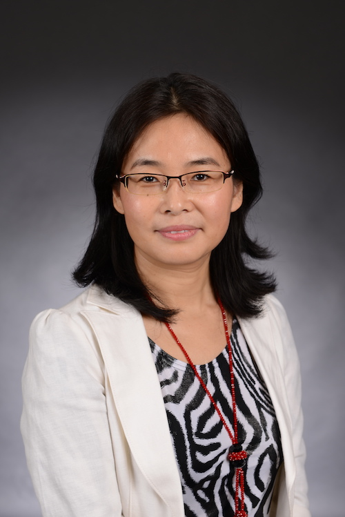 Dr. Fujuan Tan