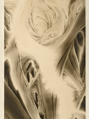 2012, ink on paper mounted as hanging scroll, 51.25 x 26 inches
