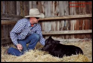 Rich Roth IX Ranch Big Sandy Montana