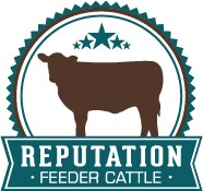 montana verified beef reputation feeder cattle