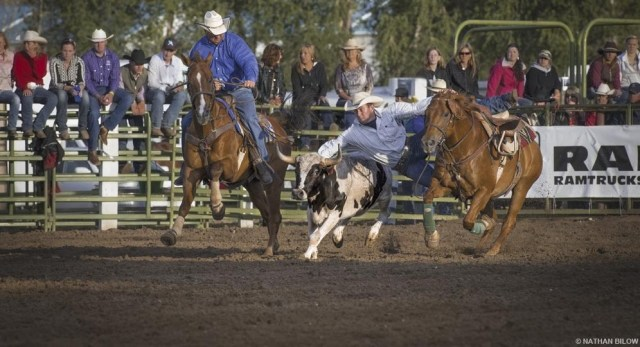 Cattlemen's Days, Colorado's oldest rodeo, Gunnison, CO