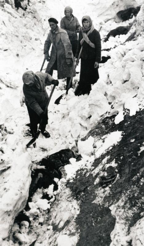 Женщина откапывает тело убитого немцами в Багеровском рву под Керчью. Январь 1942. Автор: Дмитрий Бальтерманц