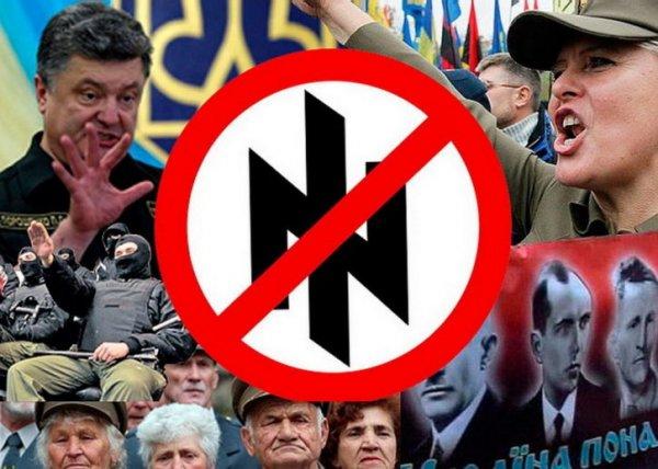 Польша ударила Порошенко в спину