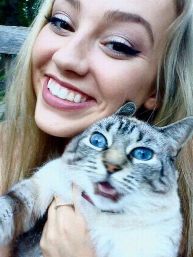 Кошка не любит, когда вы постоянно ее фотографируете
