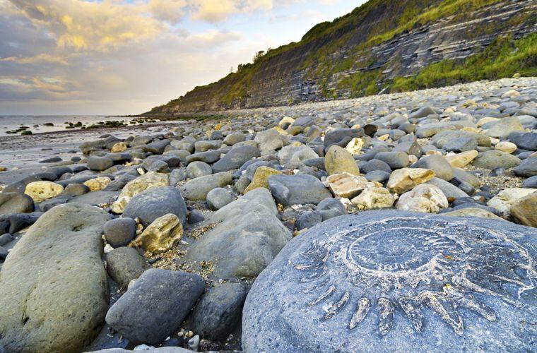 Пляж - фото самых красивых и необычных пляжей в мире. Пляж юрского периода