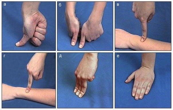 Лечим себя. Упражнения для пальцев (шиацу).
