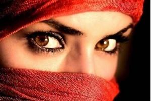 Тунис поставляет сирийс…