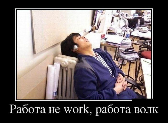 Работа не волк демотиватор, прикол, юмор