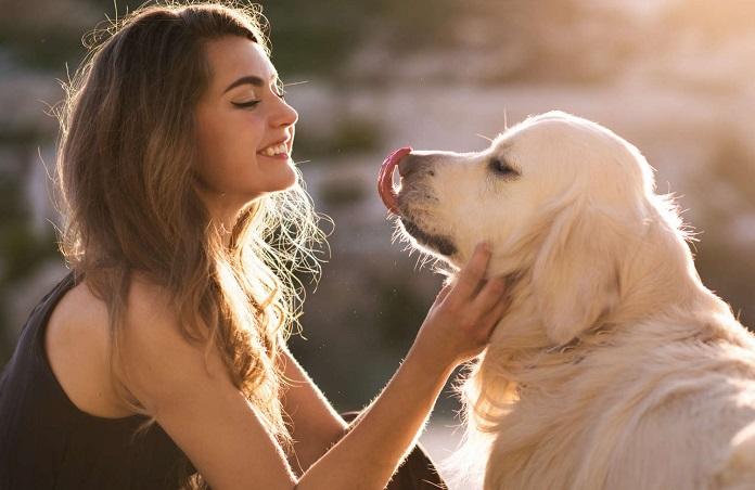 Почему собака облизывает хозяина. Что она хочет этим действием сказать?