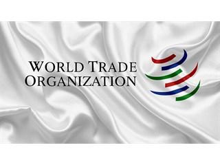 Дональд Трамп и ВТО предали Украину