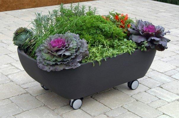 Дачные садовые идеи