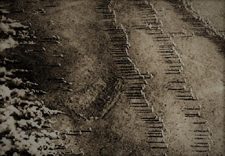 Всё дело в кавычках. «атака мертвецов», история, первая мировая война