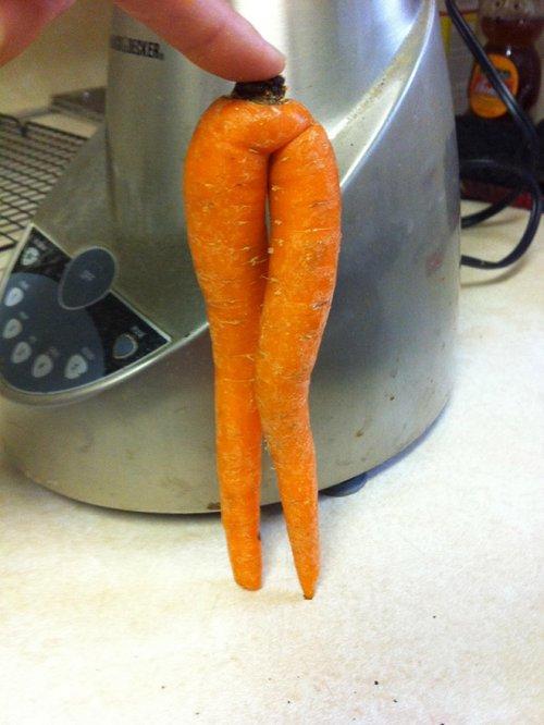 Морковка тоже может быть соблазнительной, и после просмотра этих фото вы в этом убедитесь