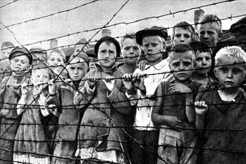 Как нацисты забирали кровь у советских детей: Тайна Красного Берега
