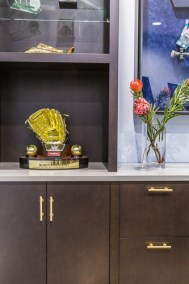 trophy case for home office