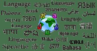 تطبيق-تعليم-اللغات-المختلفة-على-هواتف-أندرويد