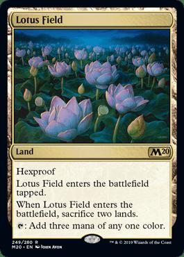 m20-249-lotus-field