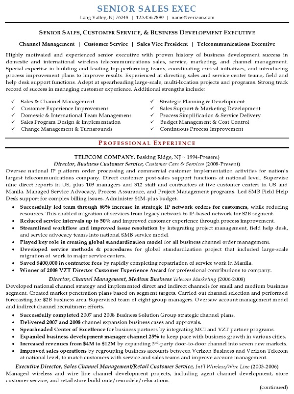 best example of a sales executives resume