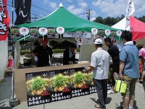 第五陣越前おおのとんちゃん祭のスタッフをしました。 京都焼肉・ホルモン梅しん/どこまでもアマチュア
