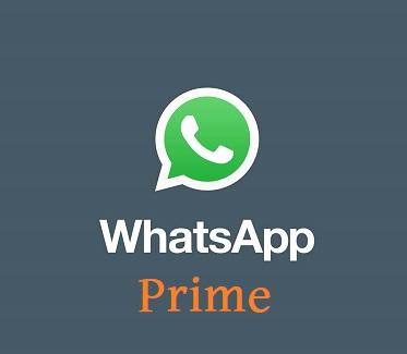 WhatsApp Prime APK Download latest version