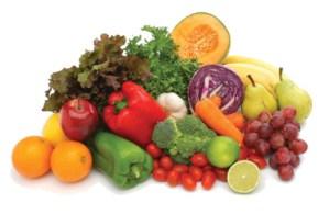weight loss program food