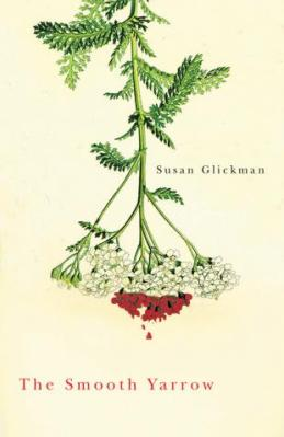 The Smooth Yarrow, by Susan Glickman