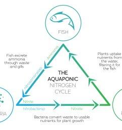 aquaponics [ 2000 x 1380 Pixel ]