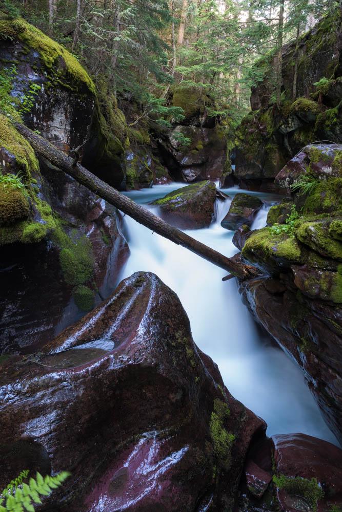 Avalnche Creek Gorge