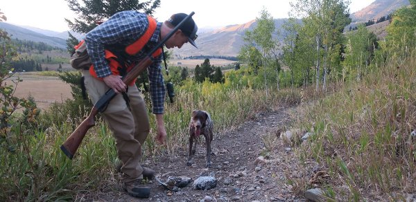 The 7 Best Pieces of Bird Hunting Gear - Mountain Weekly News