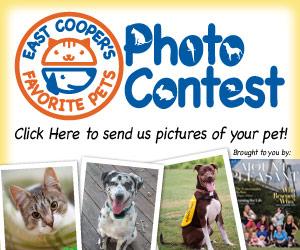 Favorite Pets / Photo Contest